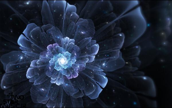 دانلود بیت اجتماعی به نام گل یخ